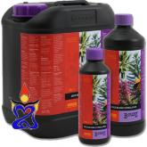 B`cuzz Coco Bloom Stimulator 1 liter