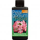 Focus Pelargonium 300 ml